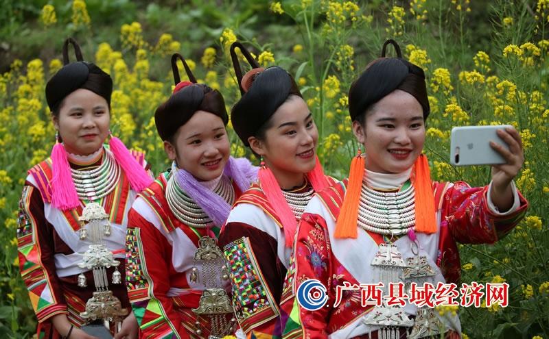 融水县:春到苗山菜花香