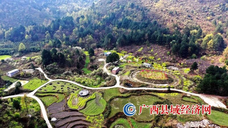 广西南丹:春到落花坪  花开产业兴