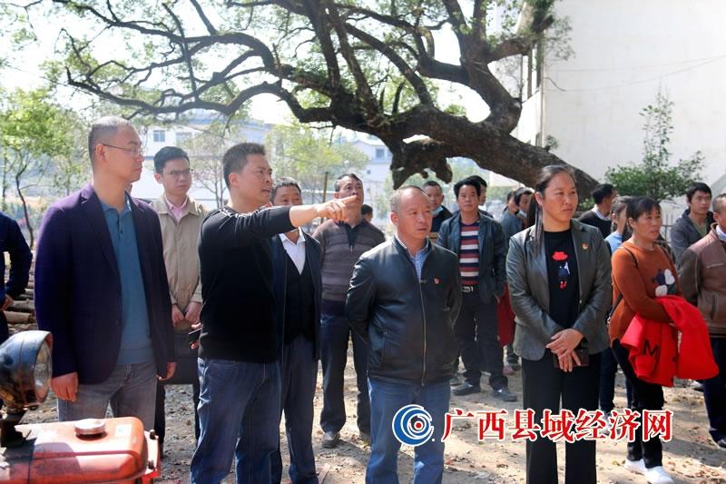 """恭城三江乡:人大代表积极参与 """"三清三拆""""助推乡村风貌提升"""