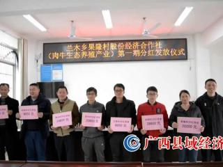 东兰县兰木乡:村级集体经济首次分红
