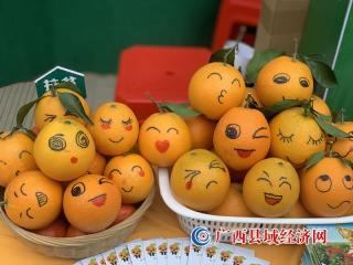 """富川脐橙获""""中国3.15消费者可信赖产品""""新荣誉"""