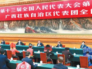 李克强在参加广西代表团审议时强调 坚定信心 攻坚克难 努力保持经济社会持续健康发展