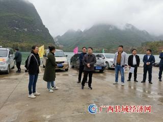 大化县委书记杨龙文到景点调研时强调  推动旅游发展带动乡村振兴