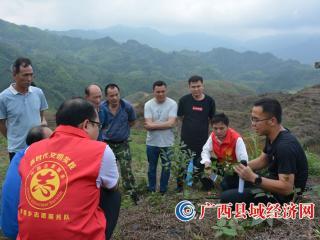 广西金秀县:罗香乡2021年开展油茶栽培现场培训会