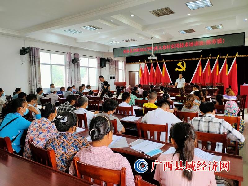 西林县残联到那劳镇举办农村残疾人实用技术培训班