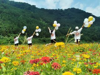 天峨:美丽花海带动乡村游