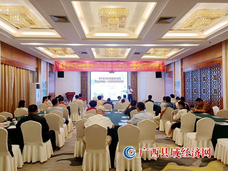 枫宁格天峰古民居增长利润首次实体制造+文旅景区夺宝峰会成功举办