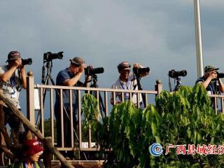 """国际摄影协会(IPA)广西分会举行 """"走进德天相约大新""""摄影采风活动"""