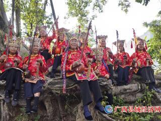 非物质文化遗产――宁明壮族仙(天)琴艺术