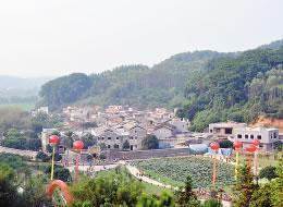 李彤华:走新型城镇化道路 建设幸福美丽苍梧