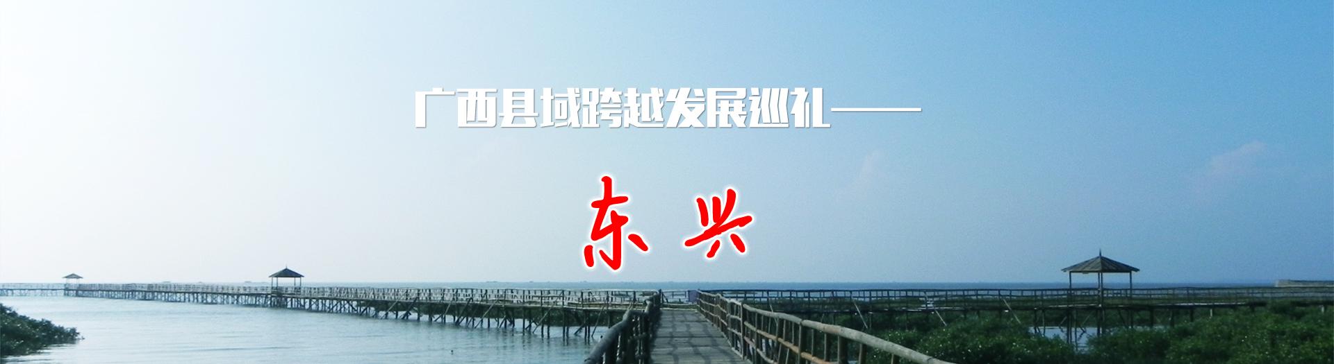 广西县域跨越发展巡礼——东兴
