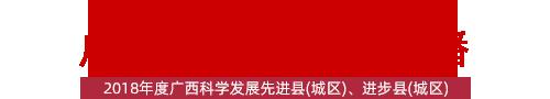 广西县域形象展播