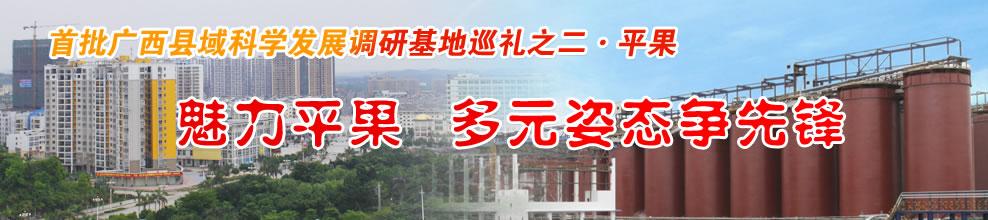 首批广西县域科学发展调研基地巡礼之二・平果