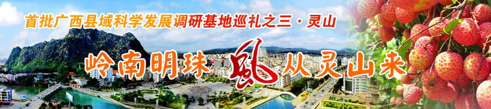 首批广西县域科学发展调研基地巡礼之三・灵山