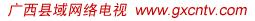 广西县域网络电视
