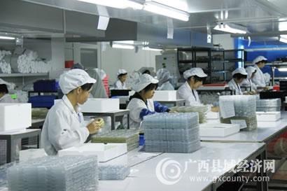 [灵山县]优化产业布局 全力推动县域经济快速发展